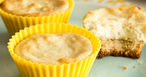 Goat Cheese Cheesecake lemon goat cheese cheesecake bites recipe | mott's®